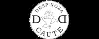 Dispuut Despinoza